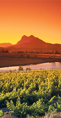 South African landscape and expat guide to South Africa.