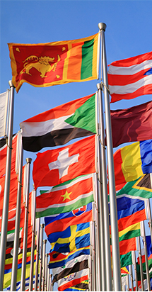 Various country flags hosted to highlight on Allianz care services for Intergovernmental firms.